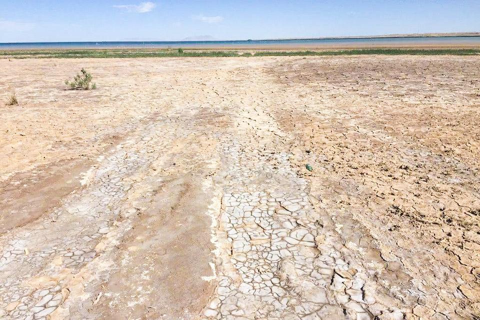 盐碱地土壤改良和污染土壤修复